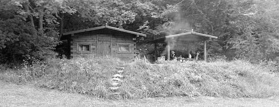 Выявлены нарушители, самовольно занявших лесные участки