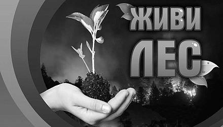 В Севастополе проходит всероссийская акция «Живи, лес!»