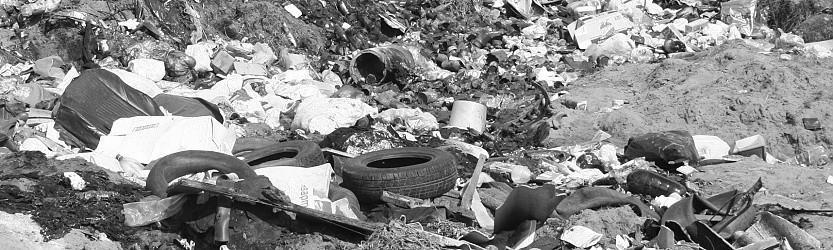 После вмешательства природоохранной прокуратуры ликвидированы свалки ТБО