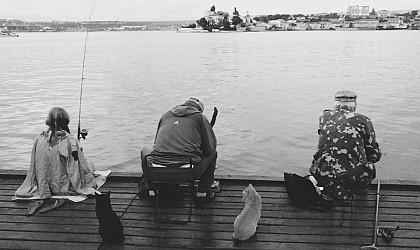 Принят закон «О любительском рыболовстве»