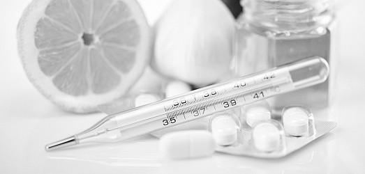 Эпидемии гриппа и ОРВИ в Севастополе нет