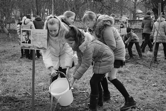 В Севастополе прошла акция «Дерево имени Героя»