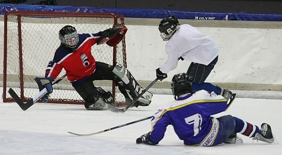 хоккей в Севастополе