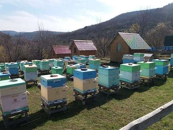 Пчеловод Севастополь