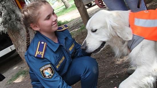 собака МЧС