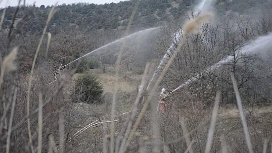 лесной пожар Крым