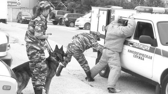Севастопольские полицейские-кинологи и их четвероногие напарники отмечают профессиональный праздник