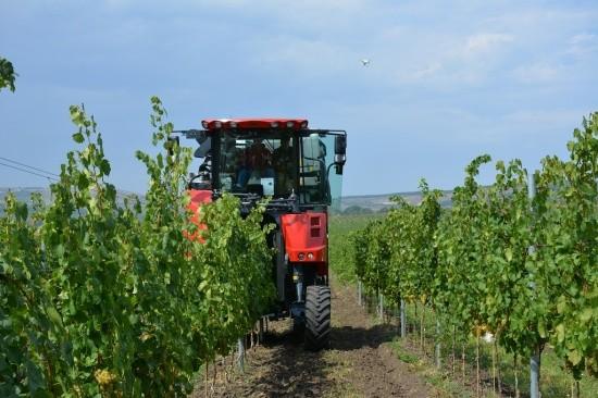 Техника нового поколения – в помощь виноградарям Севастополя
