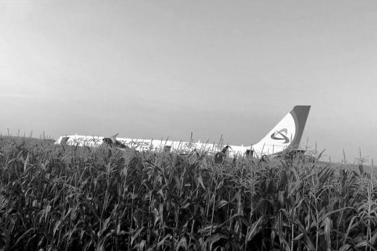 Самолет вылетевший из Подмосковья в Симферополь совершил аварийную посадку
