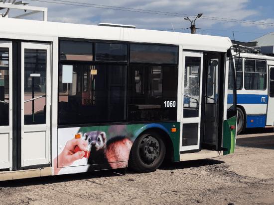 В Севастополе вновь на троллейбусах размещена экологическая реклама