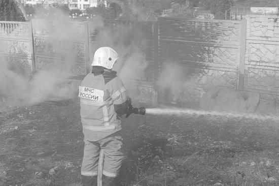 В Севастополе ликвидировали два крупных природных пожара (видео)