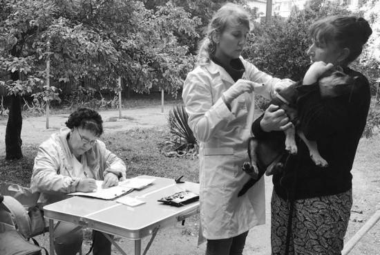 В выходные пройдет очередная вакцинация животных
