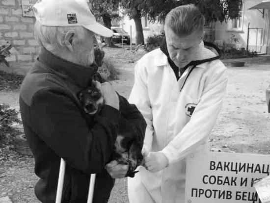 Более 50 животных привили сегодня в микрорайоне Радиогорка