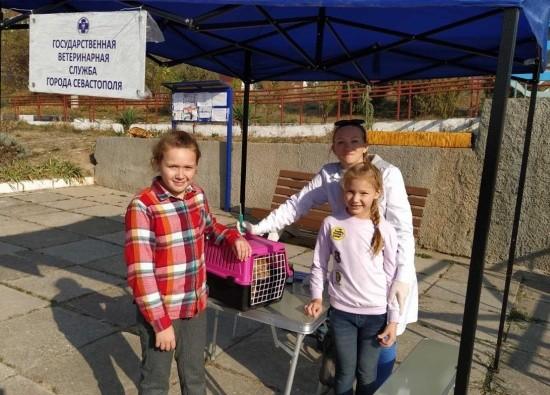 Ветеринары привили за выходные 279 домашних животных в Севастополе