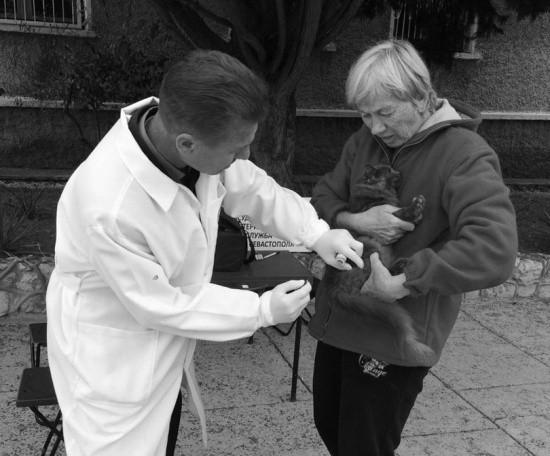 Ветеринары привили за выходные 155 домашних животных в Севастополе