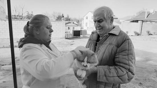 За выходные в Севастополе ветеринары привили 281 домашнее животное