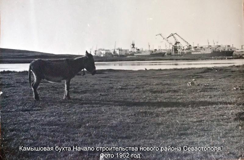 Славная бухта Камышовая