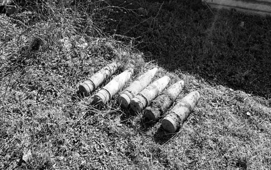 85-летняя жительница Севастополя нашла в огороде боеприпасы