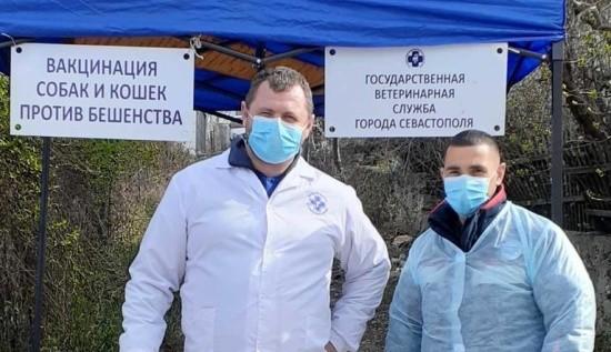 В Севастополе прошел очередной этап вакцинации домашних животных