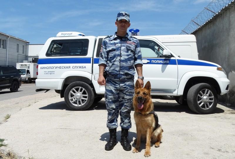 Полицейская овчарка Хаза на страже правопорядка в Севастополе