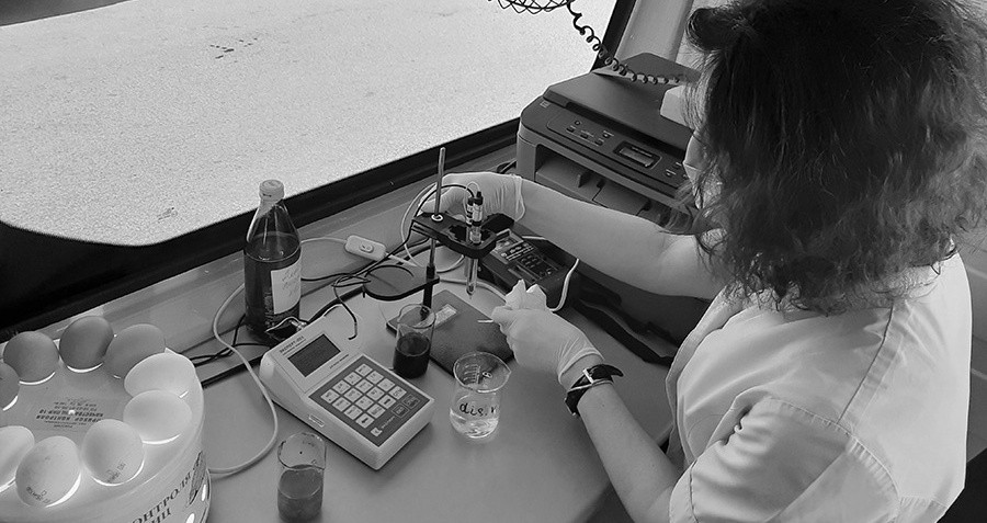 Как в Севастополе работает передвижная лаборатория ветеринарно-санитарной экспертизы?
