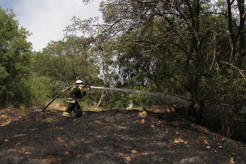 В Севастополе ликвидирован крупный природный пожар