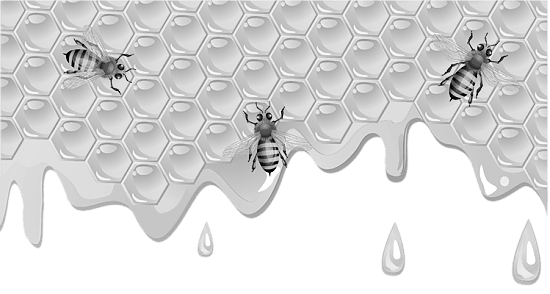 Мёд или медовый продукт? Как обезопасить себя от некачественного продукта?