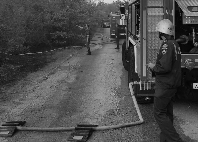В Севастополе произошел природный пожар у села Дальнее