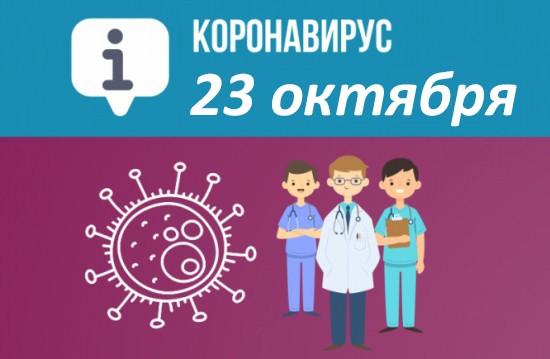 Оперативная сводка по коронавирусу в Севастополе на 23 октября