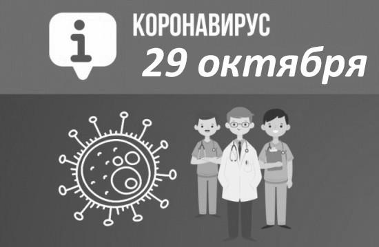 Оперативная сводка по коронавирусу в Севастополе на 29 октября
