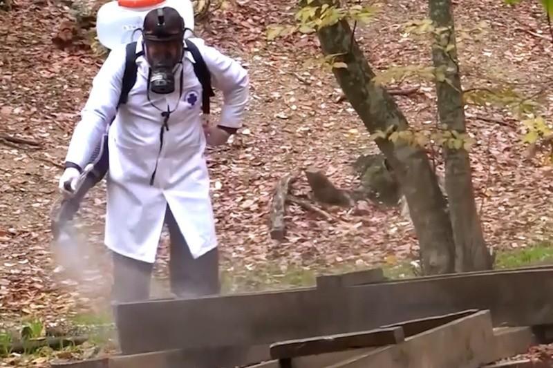 В охотничьих угодьях Севастополя проведена профилактическая дезинфекция