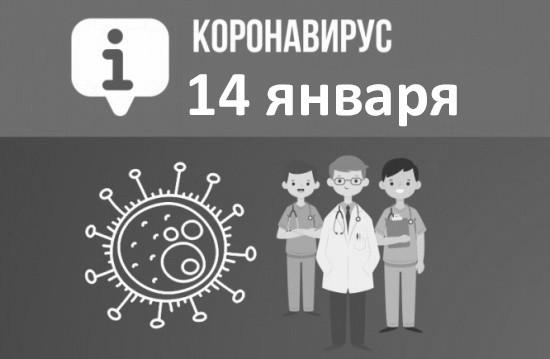 Оперативная сводка по коронавирусу в Севастополе на 14 января