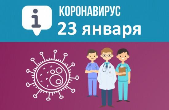 Оперативная сводка по коронавирусу в Севастополе на 23 января