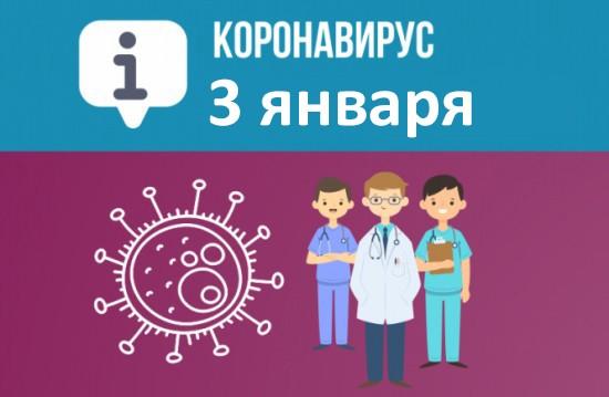 Оперативная сводка по коронавирусу в Севастополе на 3 января
