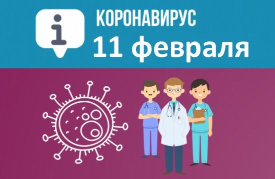 Оперативная сводка по коронавирусу в Севастополе на 11 февраля