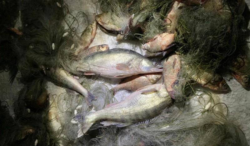 В Крыму задержана группа браконьеров