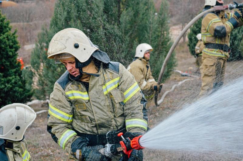 В Севастополе прошли учения по тушению крупного лесного пожара