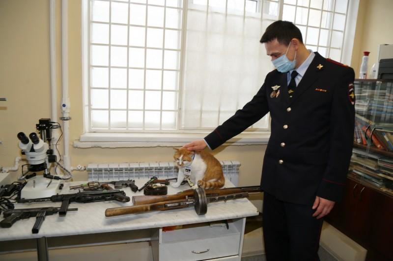 Кот Мостик посетил крымских экспертов-криминалистов