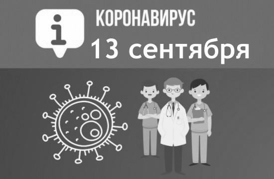 За сутки в Севастополе выявили 84 новых случая COVID-19