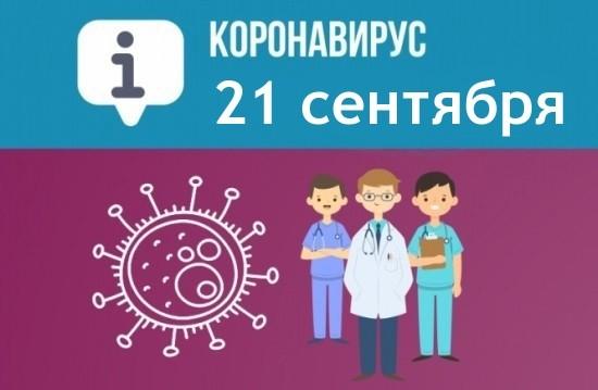 За сутки в Севастополе выявили 109 новых случаев COVID-19
