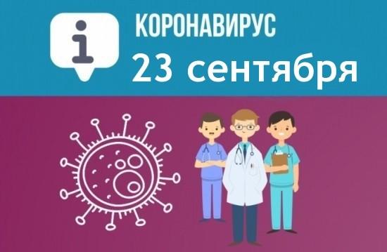 За сутки в Севастополе выявили 122 новых случая COVID-19