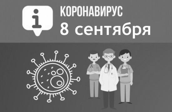 За сутки в Севастополе выявили 116 новых случаев COVID-19