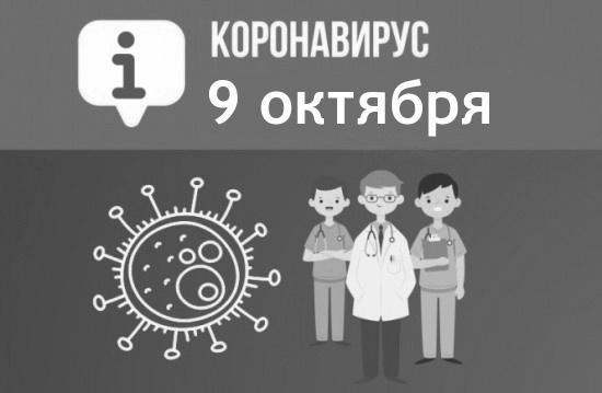 За сутки в Севастополе выявили 221 новый случай COVID-19